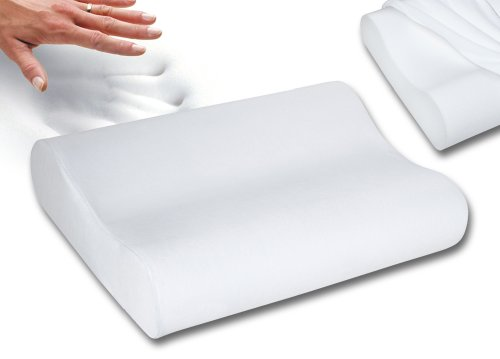 Sleep Innovations Contour Memory Foam Pillow Standard